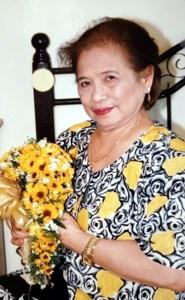 Josefina Jorge  Visorde