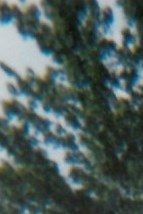 "Brent ""Mike"" Michael  Mauldin"