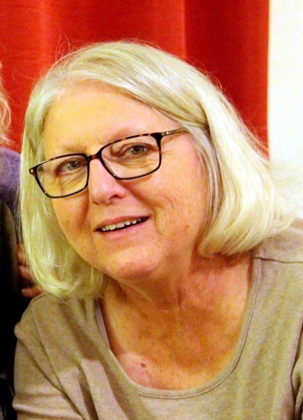 Carol Ann  Botke